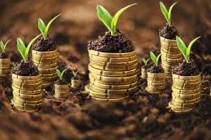 money_growth